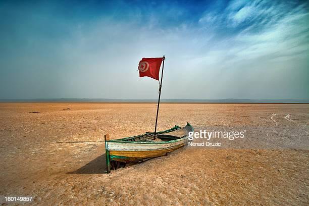 chott el jerid - drapeau tunisien photos et images de collection