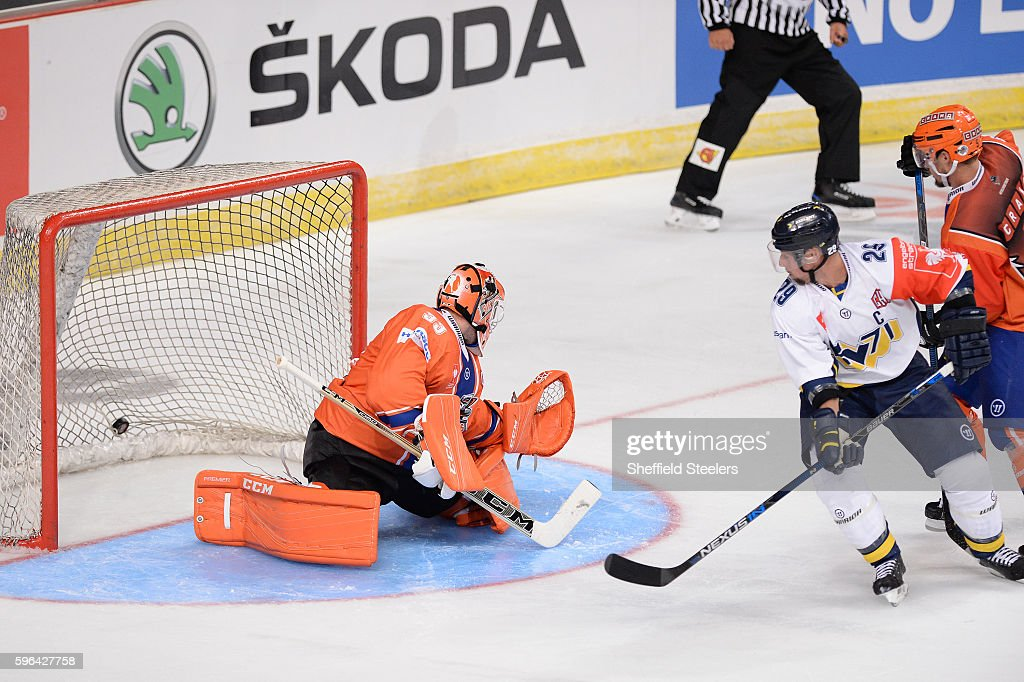Sheffield Steelers v HV71 Jonkoping - Champions Hockey League
