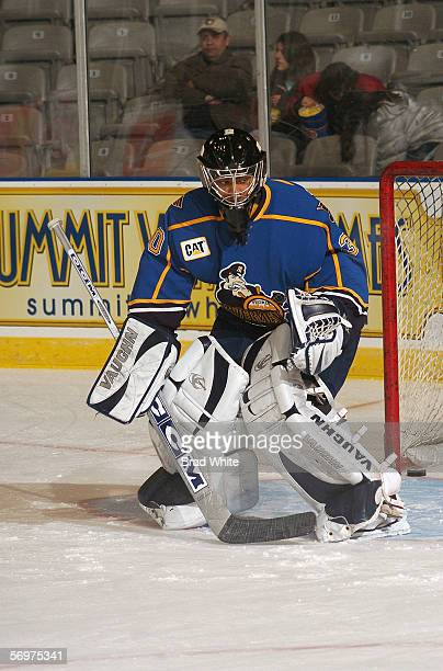 Chris BeckfordTseu of the Peoria Rivermen tends goal against the Toronto Marlies at Ricoh Coliseum on February 3 2006 in Toronto Ontario Canada The...