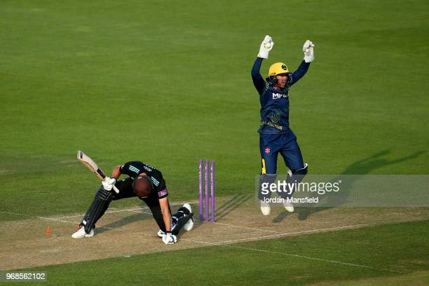 Chris Cooke of Glamorgan appeals unsuccessfully for the stumping of Will Jacks of Surrey during the Royal London OneDay Cup game between Surrey and...