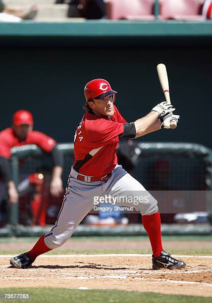 Chris Denorfia of the Cincinnati Reds watches his line drive as it is caught during a spring training game against the Tampa Bay Devil Rays on March...