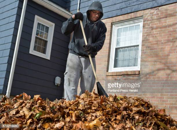 Chris Fletcher rakes leaves into piles outside his home in Portland on Sunday November 12 2017 His son James was helping him Chris said that they...