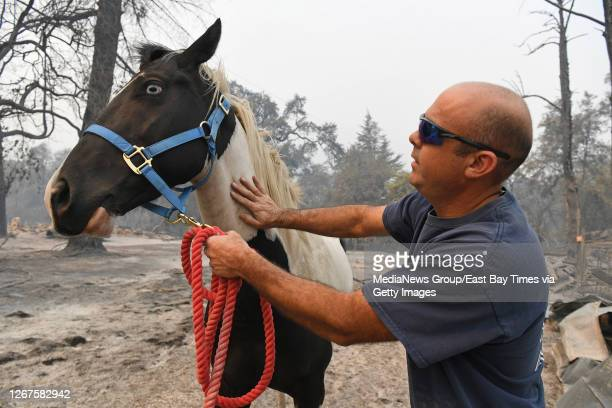 Chris Garcia, of Vacaville, calms a horse after leading him to safety on Pleasants Valley Road in Vacaville, Calif., on Thursday, Aug. 20, 2020....