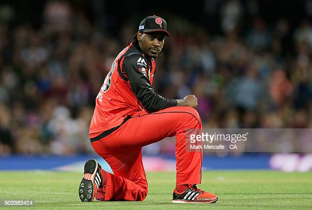 Chris Gayle of the Renegades looks towards the ball after a misfield during the Big Bash League match between the Hobart Hurricanes and the Melbourne...