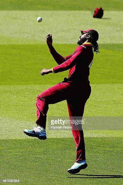 Chris Gayle of West Indies celebrates after taking the wicket of Kane Williamson of New Zealand during the 2015 ICC Cricket World Cup match between...