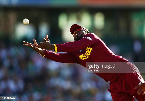 Chris Gayle of West Indies drops a catch during the 2015 ICC Cricket World Cup match between South Africa and the West Indies at Sydney Cricket...