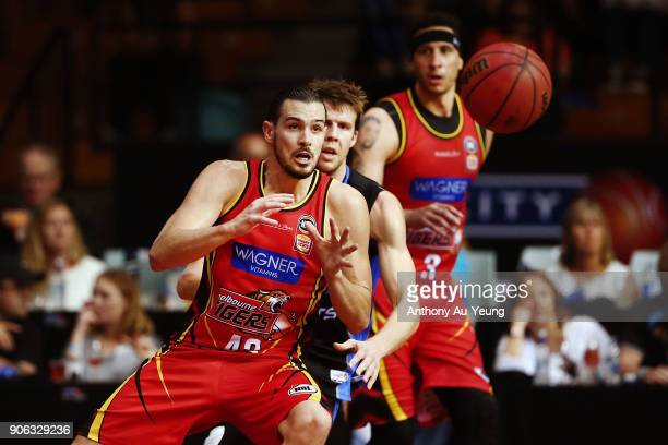 Chris Goulding of United in action during the round 16 NBL match between the New Zealand Breakers and Melbourne United at North Shore Events Centre...