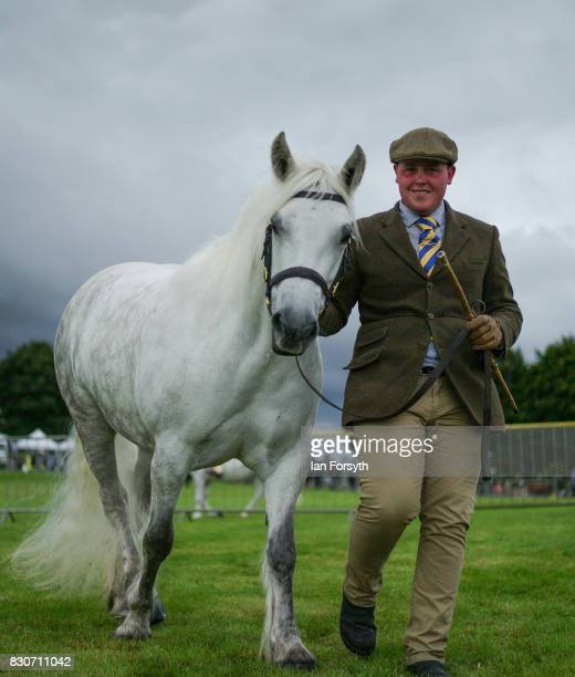 Chris Grant from Heddon on the Wall leads his horse around the arena during the 194th Sedgefield Show on August 12 2017 in Sedgefield England The...