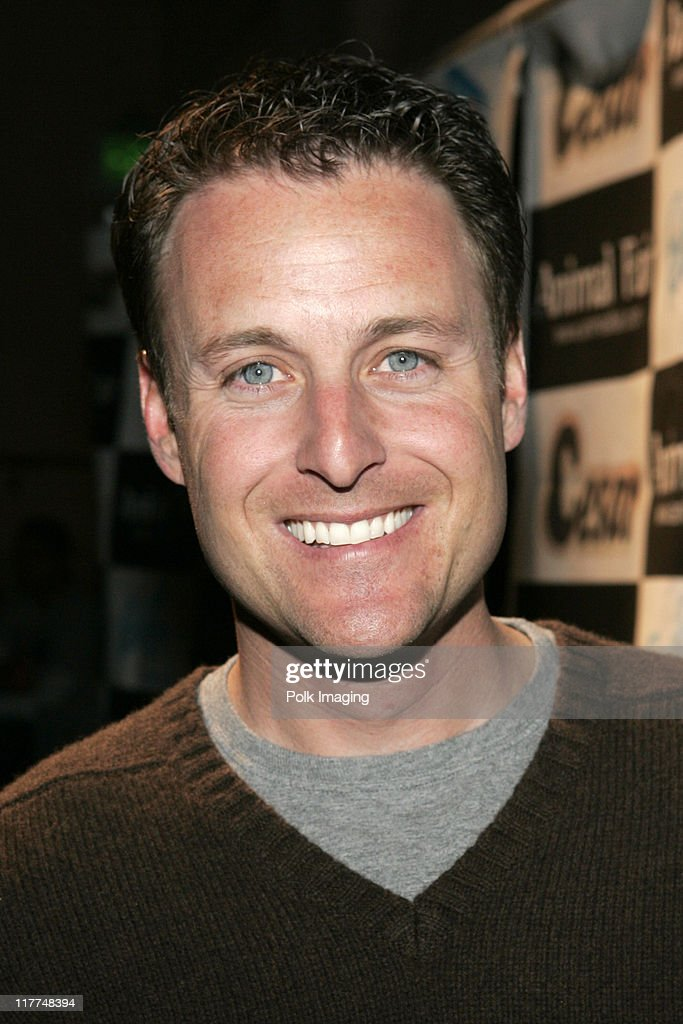 Chris Harrison during Febreze Presents Animal Fair Magazine's 7th Annual 'Paws For Style' Celebrity Pet Fashion Show Benefiting Animal Medical Center at Avalon Hollywood in Los Angeles, California, United States.