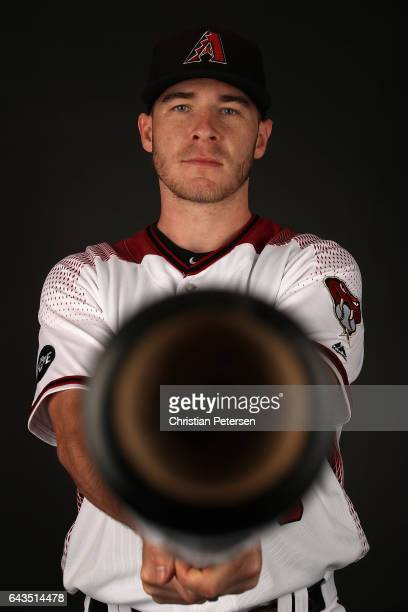 Chris Herrmann of the Arizona Diamondbacks poses for a portrait during photo day at Salt River Fields at Talking Stick on February 21 2017 in...