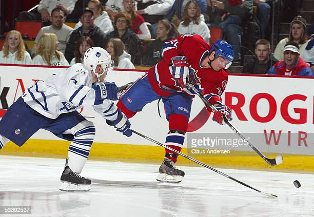 Chris Higgins of the Hamilton Bulldogs takes a shot past Ian White of the St John's Maple Leafs during a American Hockey League game at Cobbs...