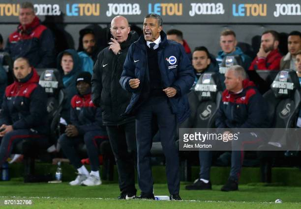 Chris Hughton Manager of Brighton and Hove Albion reacts during the Premier League match between Swansea City and Brighton and Hove Albion at Liberty...