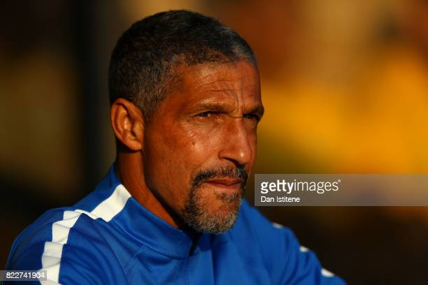 Chris Hughton manager of Brighton Hove Albion looks on before the preseason friendly match between Southend United and Brighton Hove Albion at Roots...