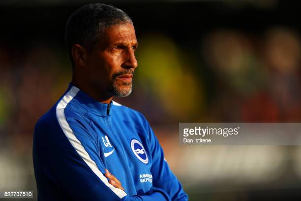 Chris Hughton manager of Brighton Hove Albion looks on during the preseason friendly match between Southend United and Brighton Hove Albion at Roots...