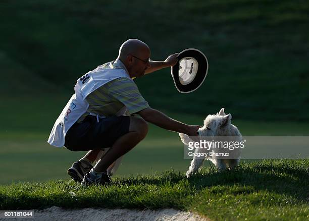 Chris Jones the caddie for Mark Wilson tries to get a dog that wandered on to the 13th green to head home during the second round of the Webcom Tour...