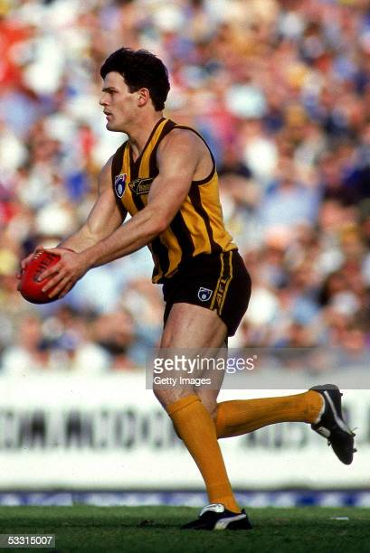 Chris Langford of the Hawks kicks for goal during a AFL semi final match between the Hawthorn Hawks and the Geelong Cats held at the Melbourne...