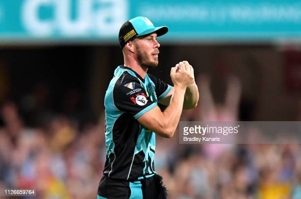 Chris Lynn of the Heat takes the catch to dismiss Andrew Tye of the Scorchers during the Big Bash League match between the Brisbane Heat and the...