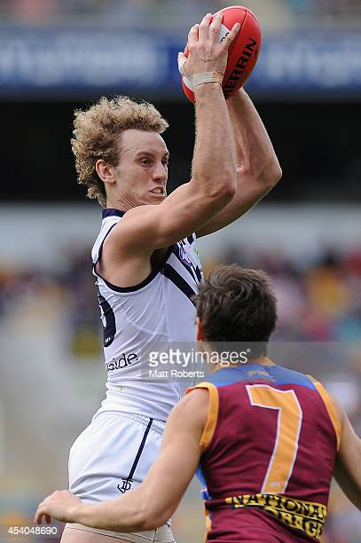 Chris Mayne of the Dockers competes for the ball with Jed Adcock of the Lions during the round 22 AFL match between the Brisbane Lions and the...