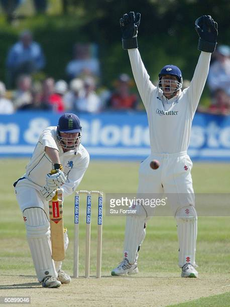 Chris Mole of Devon survives an appeal by Yorkshire wicketkeeper Richard Blakey during the Cheltenham and Gloucester Game between Devon and Yorkshire...