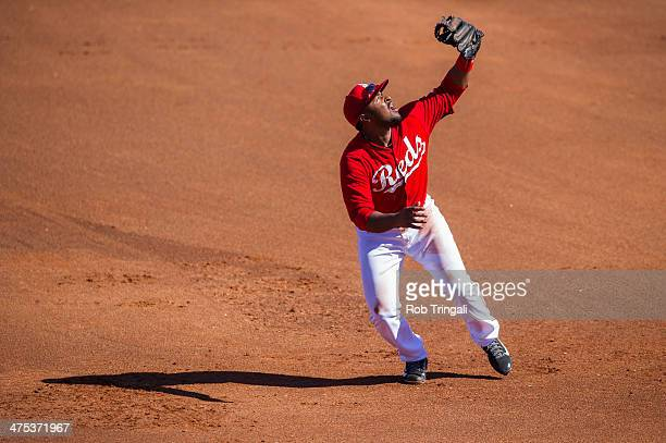 Chris Nelson of the Cincinnati Reds defends his position during a spring training game against the Cleveland Indians at Goodyear Ballpark on February...