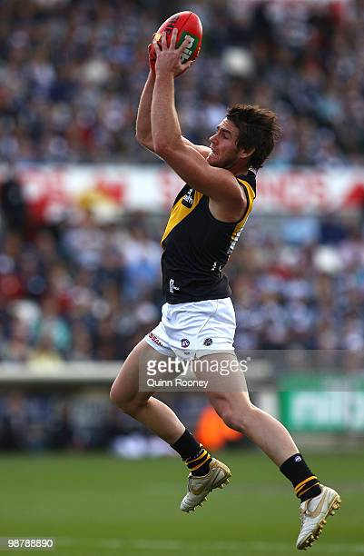 Chris Newman of the Tigers marks during the round six AFL match between the Geelong Cats and the Richmond Tigers at Skilled Stadium on May 2 2010 in...