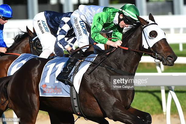 Chris Parnham riding Tavi Bay wins Race 6 during Melbourne racing at Caulfield Racecourse on May 14 2016 in Melbourne Australia