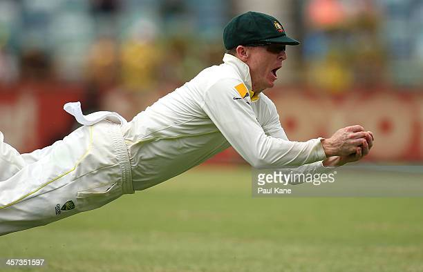 Chris Rogers of Australia takes a diving catch to dismiss Tim Bresnan of England during day five of the Third Ashes Test Match between Australia and...