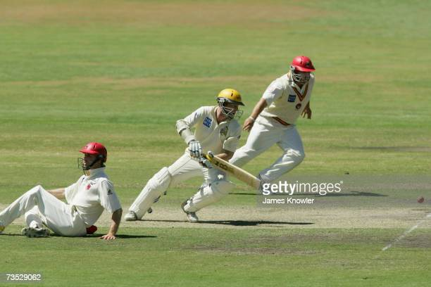 Chris Rogers of the Warriors dives back to his crease as Cameron Brogas and Mark Cosgrove of the Redbacks field during day two of the Pura Cup match...