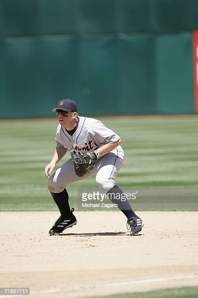 Chris Shelton of the Detroit Tigers fields against the Oakland Athletics at McAfee Coliseum in Oakland California on July 5 2006