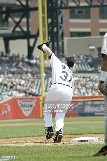 Chris Shelton of the Detroit Tigers fields during the game against the Baltimore Orioles at Comerica Park on June 5 2005 in Detroit Michigan The...