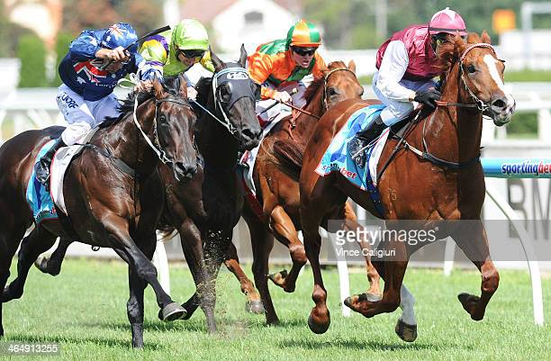 Chris Symons riding Mohave wins Race 4 the Sportingbet Blue Diamond Preview during Melbourne racing at Caulfield Racecourse on January 25 2014 in...