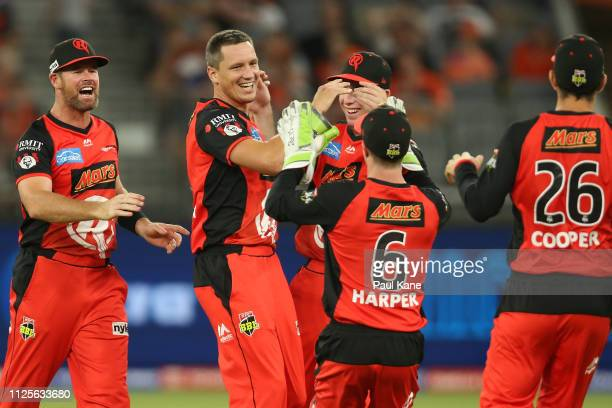 Chris Tremain of the Renegades celebrates the wicket of Cameron Bancroft of the Scorchers during the Big Bash League match between the Perth...