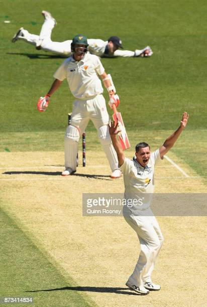 Chris Tremain of Victoria appeals for a wicket during day one of the Sheffield Shield match between Victoria and Tasmania at Melbourne Cricket Ground...
