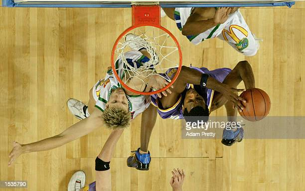 Chris Williams of the Kings goes up for a dunk during the NBL round 4 match between the Sydney Kings and the Townsville Crocodiles held at the Sydney...