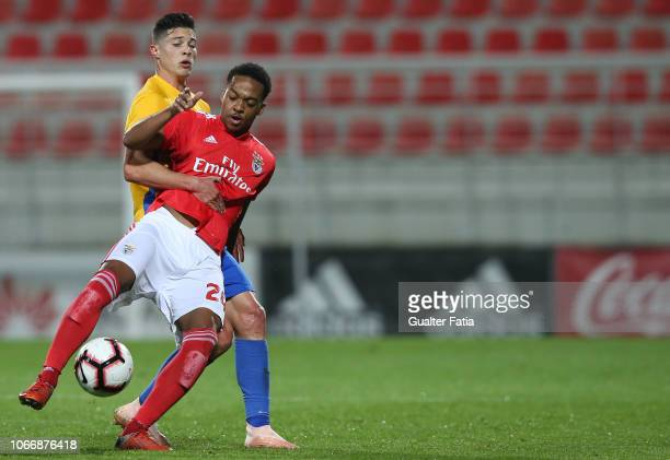 Chris Willock of SL Benfica B with Filipe Soares of GD Estoril Praia in action during the Ledman Liga Pro match between SL Benfica B and GD Estoril...
