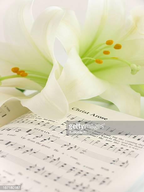 christ arose - easter lily stock pictures, royalty-free photos & images