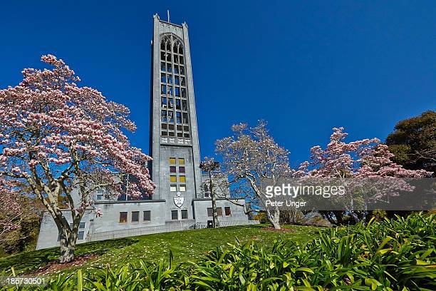 christ church anglican cathedral - peter nelson stock pictures, royalty-free photos & images