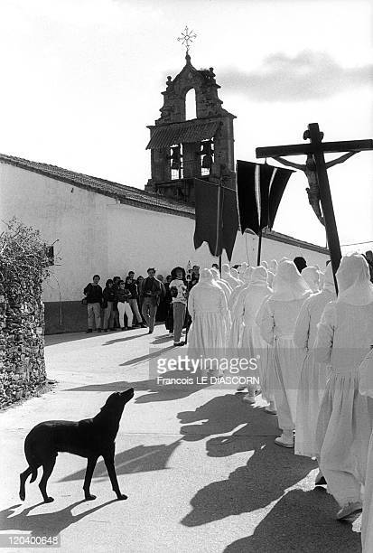 Christ in Zamora Spain Penitents in white with a black dog during the religious procession celebrating Easter