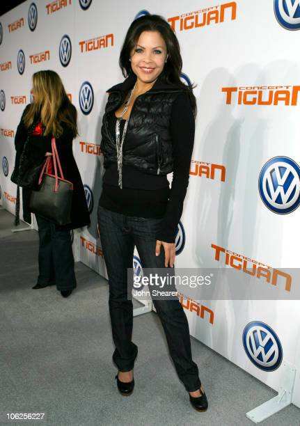 Christa Campbell during Volkswagen Presents The US Premiere of CONCEPT TIGUAN - Red Carpet at Raleigh Studios in Los Angeles, California, United...