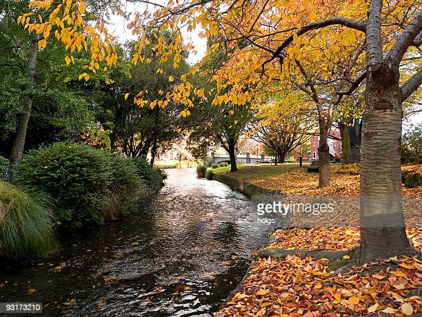 Christchurch Autumn