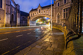 Christchurch Cathedral at night in Dublin City, Ireland