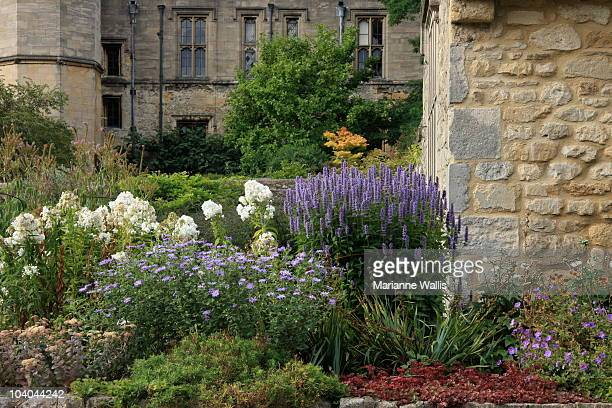 christchurch, oxford, england - botanical garden stock pictures, royalty-free photos & images
