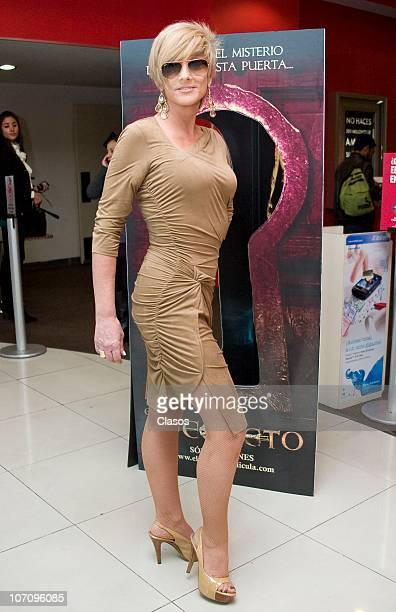 Christian Bach during a press conference to launch the movie El Secreto at Cinemex Universidad on November 23 2010 in Mexico City Mexico