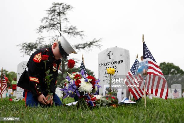 Christian Jacobs places a flower near the headstone of his father Marine Sgt Christopher Jacobs at Arlington National Cemetery on Memorial Day May 27...