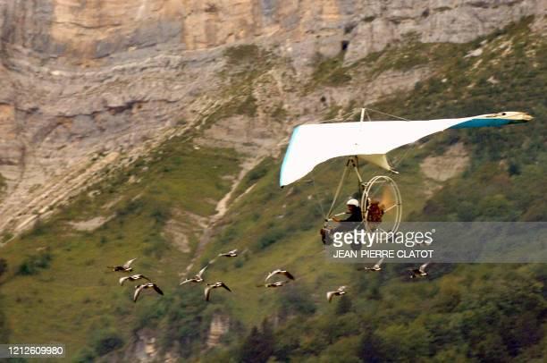 Christian Moullec dont les oies bernaches sont les héroines du film de Jacques Perrin Le peuple migrateur vole avec douze de ses palmipèdes le 22...
