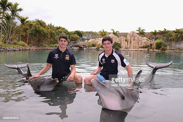 Christian Petracca and Angus Brayshaw pose with dolphins at Sea World ahead of the AFL Draft at Sea World on November 26 2014 on the Gold Coast...