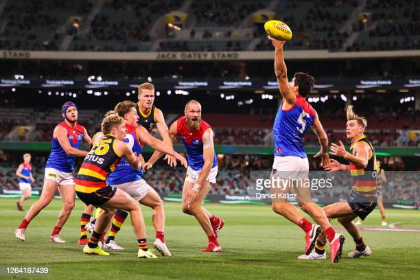 Christian Petracca of the Demons competes for the ball during the round 10 AFL match between the Adelaide Crows and the Melbourne Demons at Adelaide...