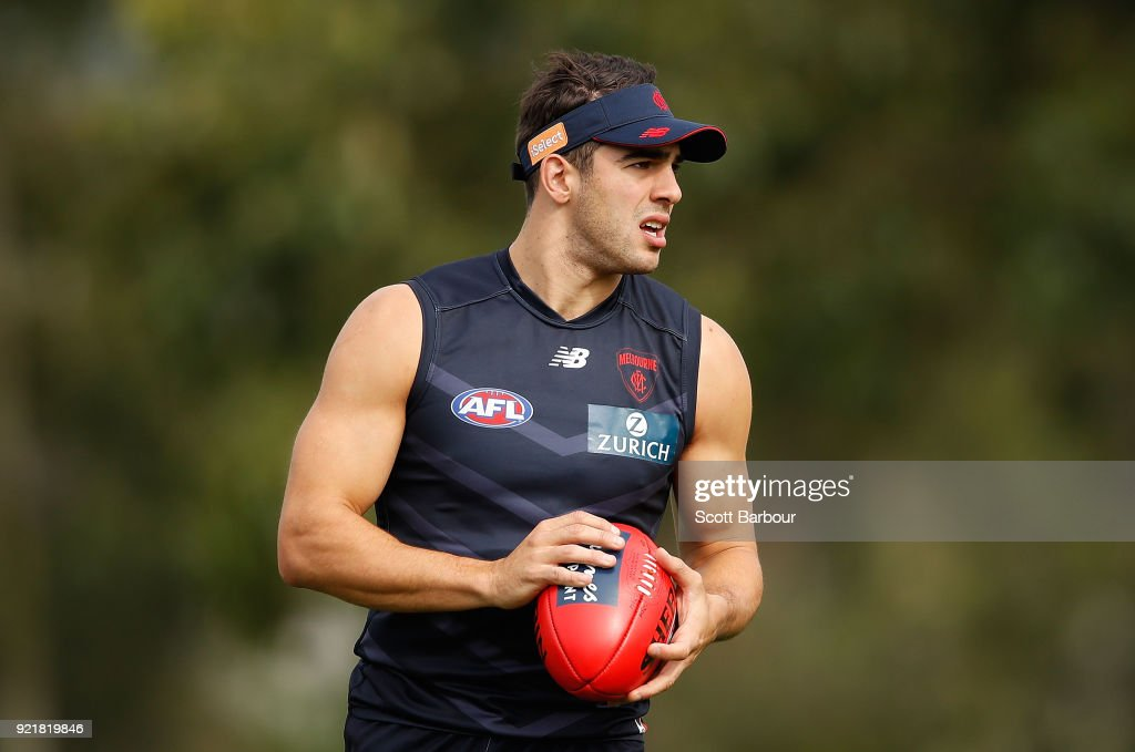 Melbourne Demons Training Session : News Photo