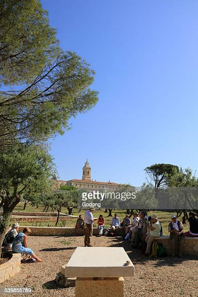 christian pilgrimage - garden of gethsemane stock pictures, royalty-free photos & images