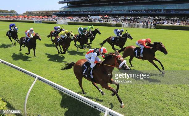 Christian Reith on Almost Court ties with Glyn Schofield on Emperor's Way in race 3 during Apollo Stakes Day at Royal Randwick Racecourse on February...